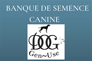 Read more about the article DOG-GEN-USE, Banque de Semence